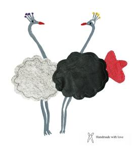 avestruzesdetalhes